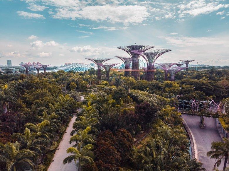 Insurance Market in Singapore, Singapore company registration, Singapore insurance market trend